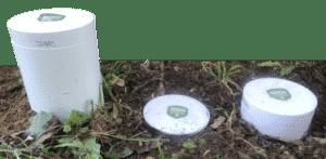 safe termite treatment
